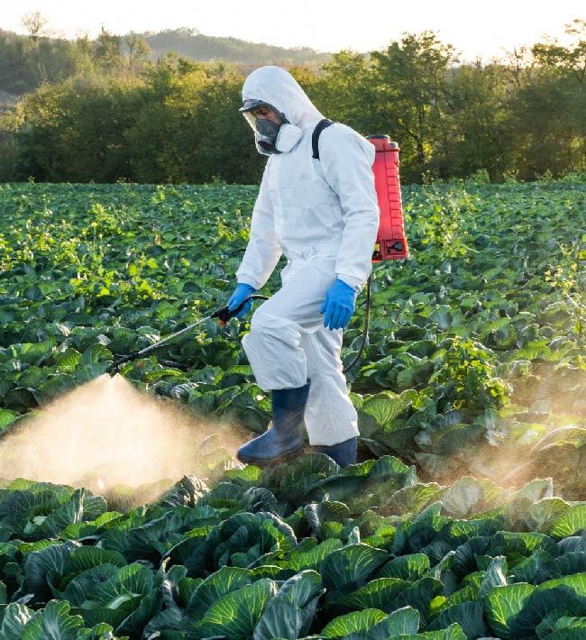 Usuario profesional de productos fitosanitarios. Nivel básico. 25 octubre al 2 de noviembre. Granadilla