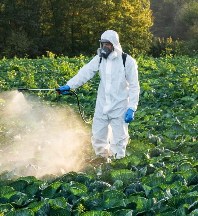 Usuario profesional de productos fitosanitarios. Nivel básico. 8 al 16 de noviembre. Tacoronte